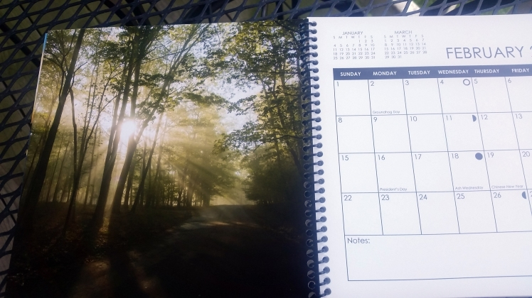 2015 Desktop Calendar- February