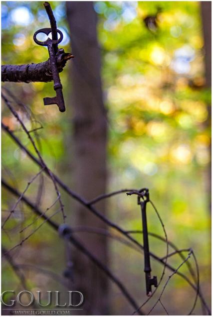 TreeKeyweb